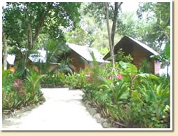 Bunglalow at Dolphin Bay Resort - Courtesy of www.dolphinbay-resort-peleliu.com